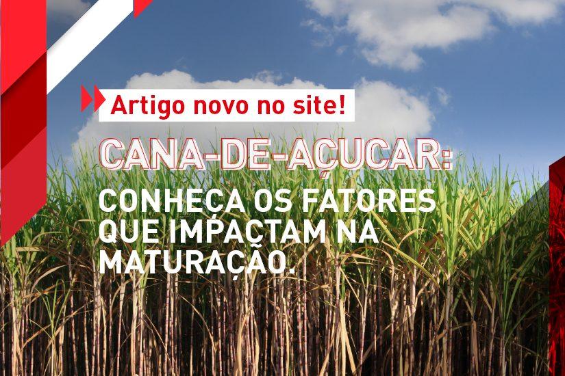 Artigo novo no site! Cana-de-açúcar Conheça os fatores que impactam na maturação