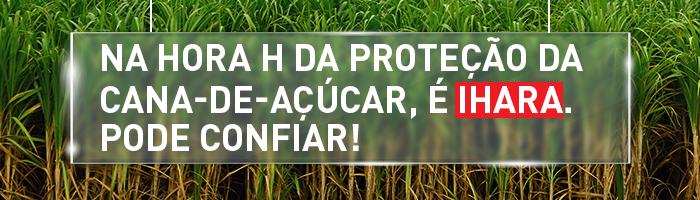 Na hora H da proteção da cana-de-açúcar, é IHARA. Pode confiar!