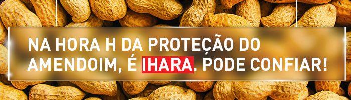 Na hora H da proteção do amendoim, é IHARA. Pode confiar!